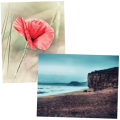 stunning photography art and decor products