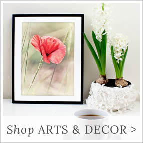 shop arts & decor at Lemon Leaf Prints