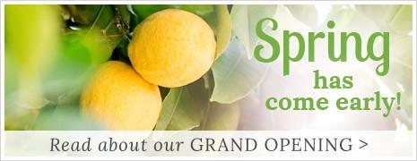 Lemon Leaf Prints Grand Opening
