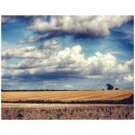 Clouds over farmland hdr landscape art print