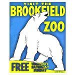 Digitally Restored 11x14 Vintage Brookfield Zoo Polar Bear Art Print