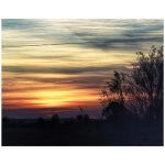 Sunset grasses art print