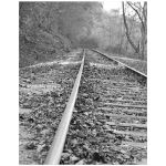 Black and white train tracks photo art print