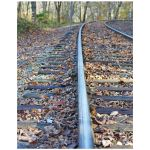 Train tracks color photo art print