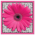 Hot pink, black, and white floral gerber daisy flower bridal shower invitation front