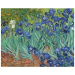 8x10 Wall Art Reproduction of Van Gogh's Irises