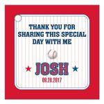 Bar Bat Mitzvah Gift Tag - Red Pinstripe Baseball Sports Card