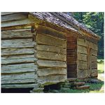 Old wooden house color photograph