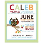Hoot Owl Personalized Birth Announcement Print