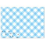 Blue Gingham Picnic BBQ Party invitation