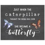 8x10 Caterpillar and Butterfly Chalkboard Art Print
