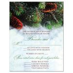 Winter forest wedding response reply RSVP enclosure card insert with snow and evergreen branches or boughs.