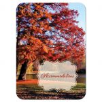 Autumn trees fall foliage wedding accommodations enclosure cards with water, pond, or lake in burnt orange, rust, red, gold, tan, and brown.