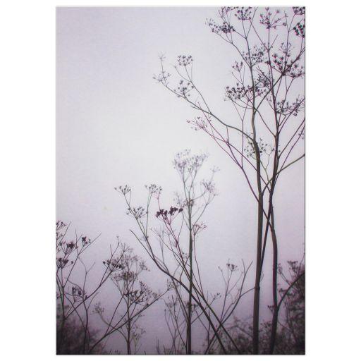 WIld flowers in mist art print