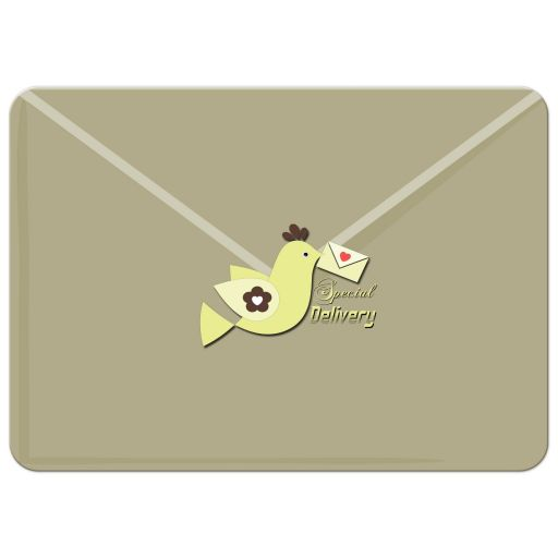 faux special delivery envelope