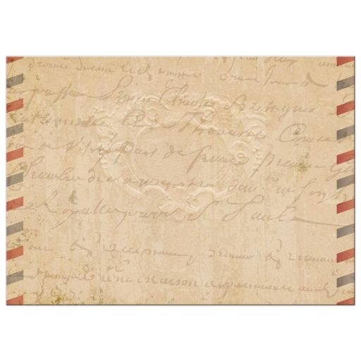 Bridal Wedding Shower invitation - Vintage Parisian Airmail