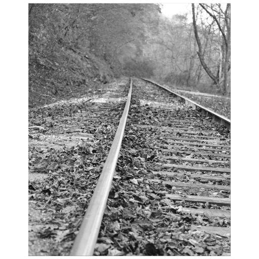Black and white train tracks photo art print