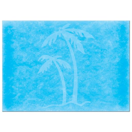 Paua shell starfish sandy beach and ocean tropical destination wedding invitation back