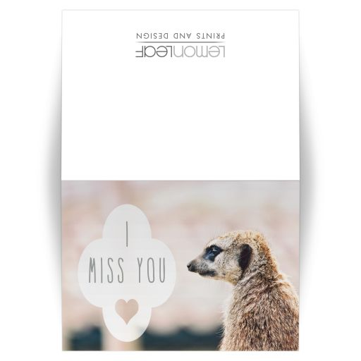 meerkat i miss you card