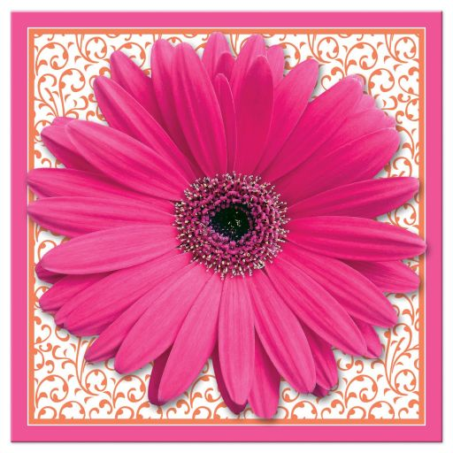 Hot pink and bright orange floral gerber daisy flower bridal shower invitation front