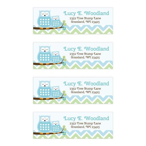 Sweet Owls Blue Chevron Return Address Mailing Label Stickers