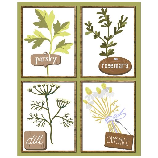 8x10 Herb Garden Contemporary Kitchen Wall Art