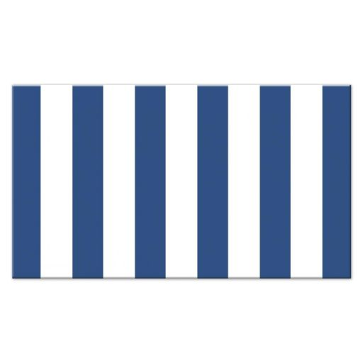 Blue and white stripes, back of nautical baby shower diaper raffle ticket