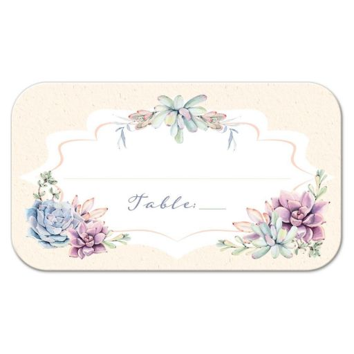 Pastel peach, green, blue, pink and lavender wedding place card or escort card with watercolor cacti and succulents.