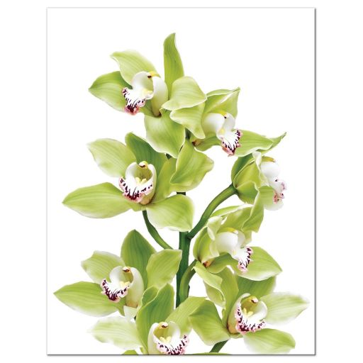 Burgundy and green cymbidium orchid wedding RSVP card back