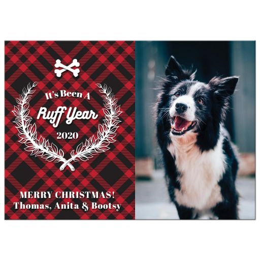 It's Been A Ruff Year Pet Holiday Card by The Spotted Olive