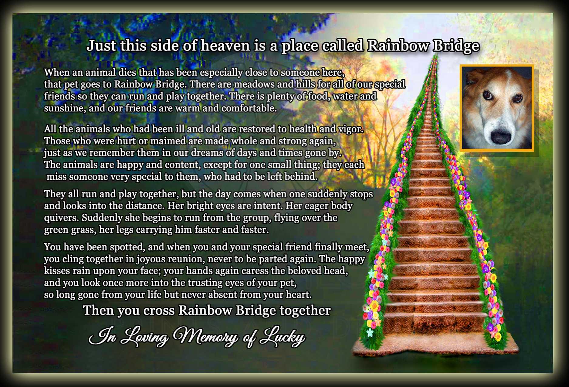 graphic about Rainbow Bridge Pet Poem Printable referred to as Rainbow Bridge Doggy Reduction Poem Memorial Posting Card