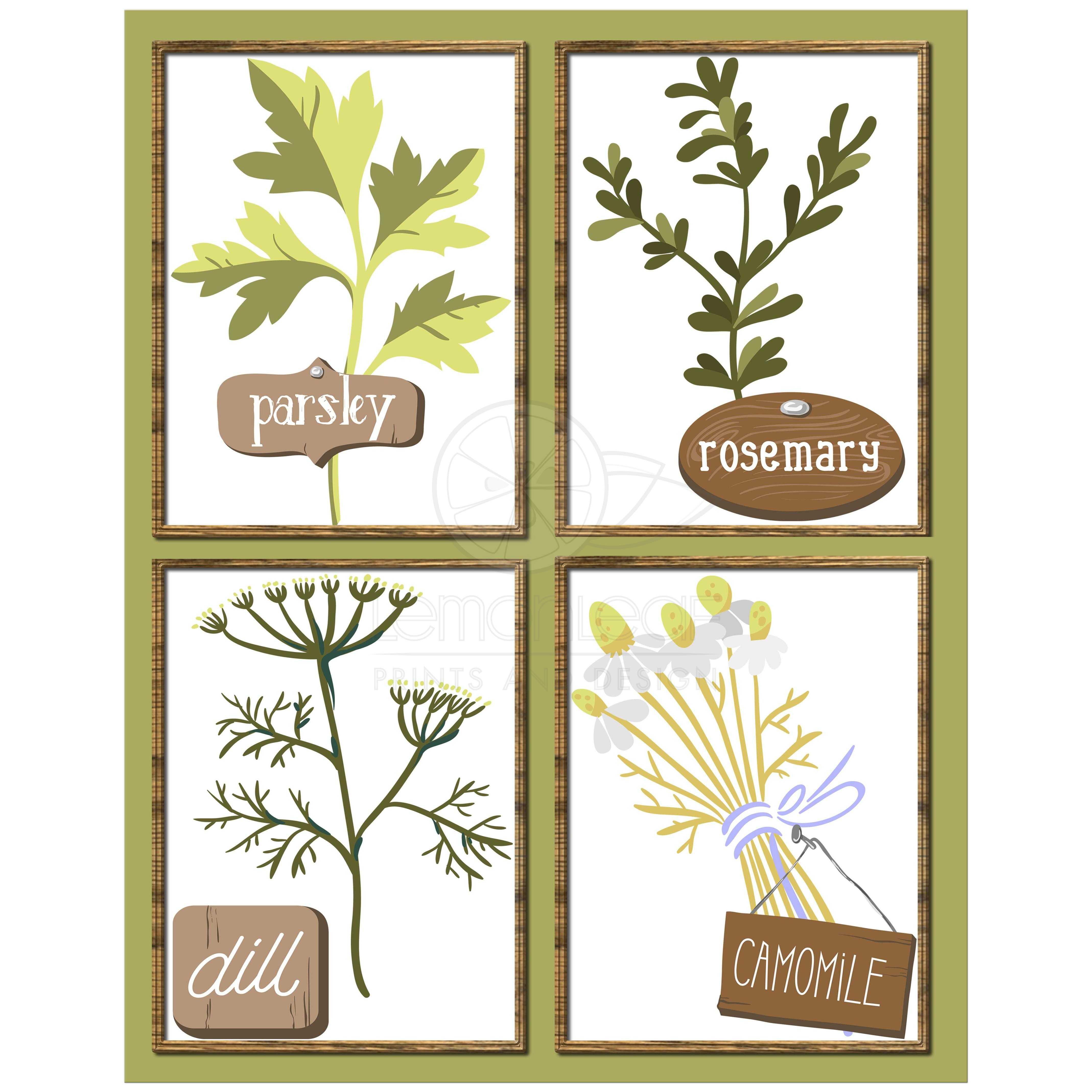 11x14 Herb Garden Contemporary Kitchen Wall Art