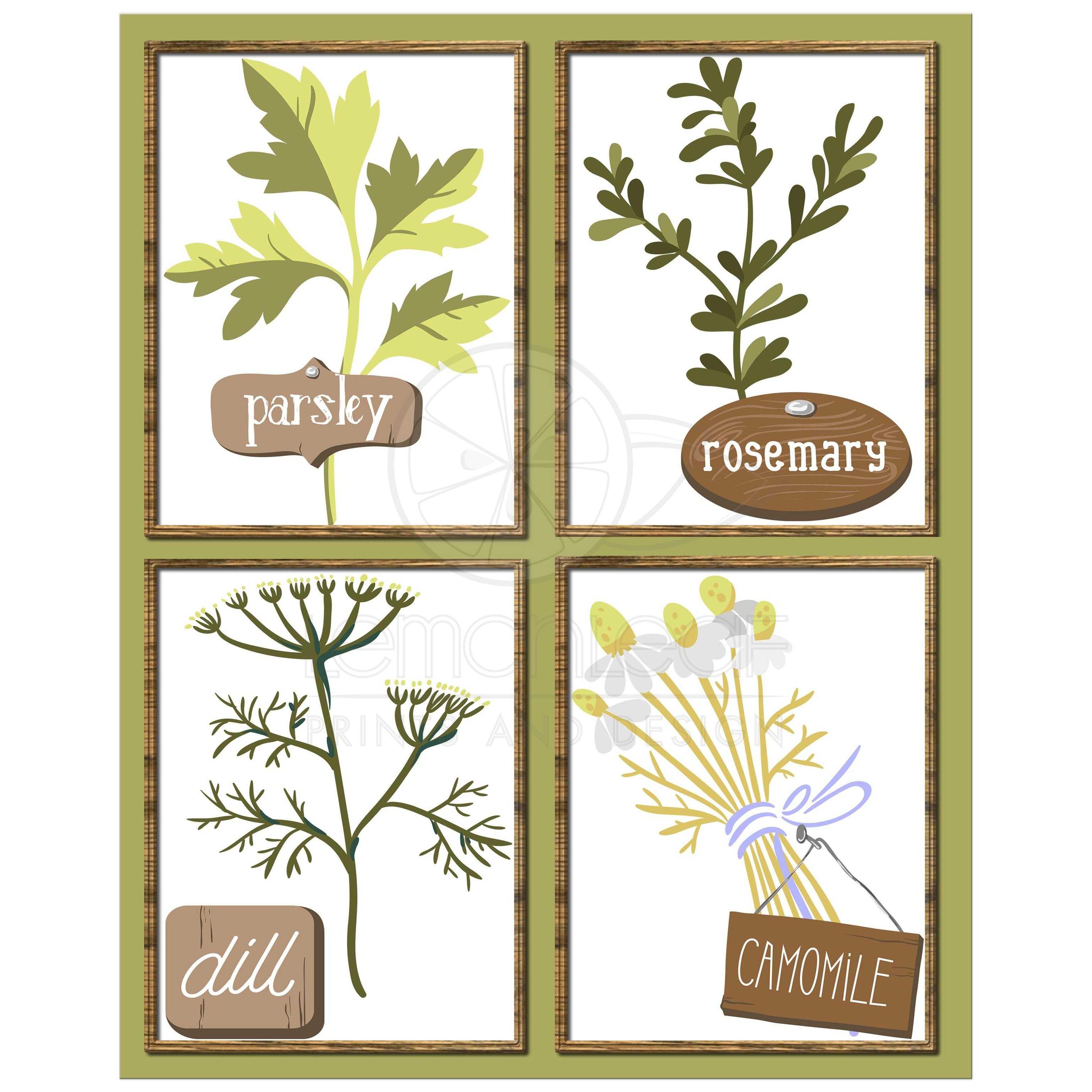 8x10 Herb Garden Contemporary Kitchen Wall Art
