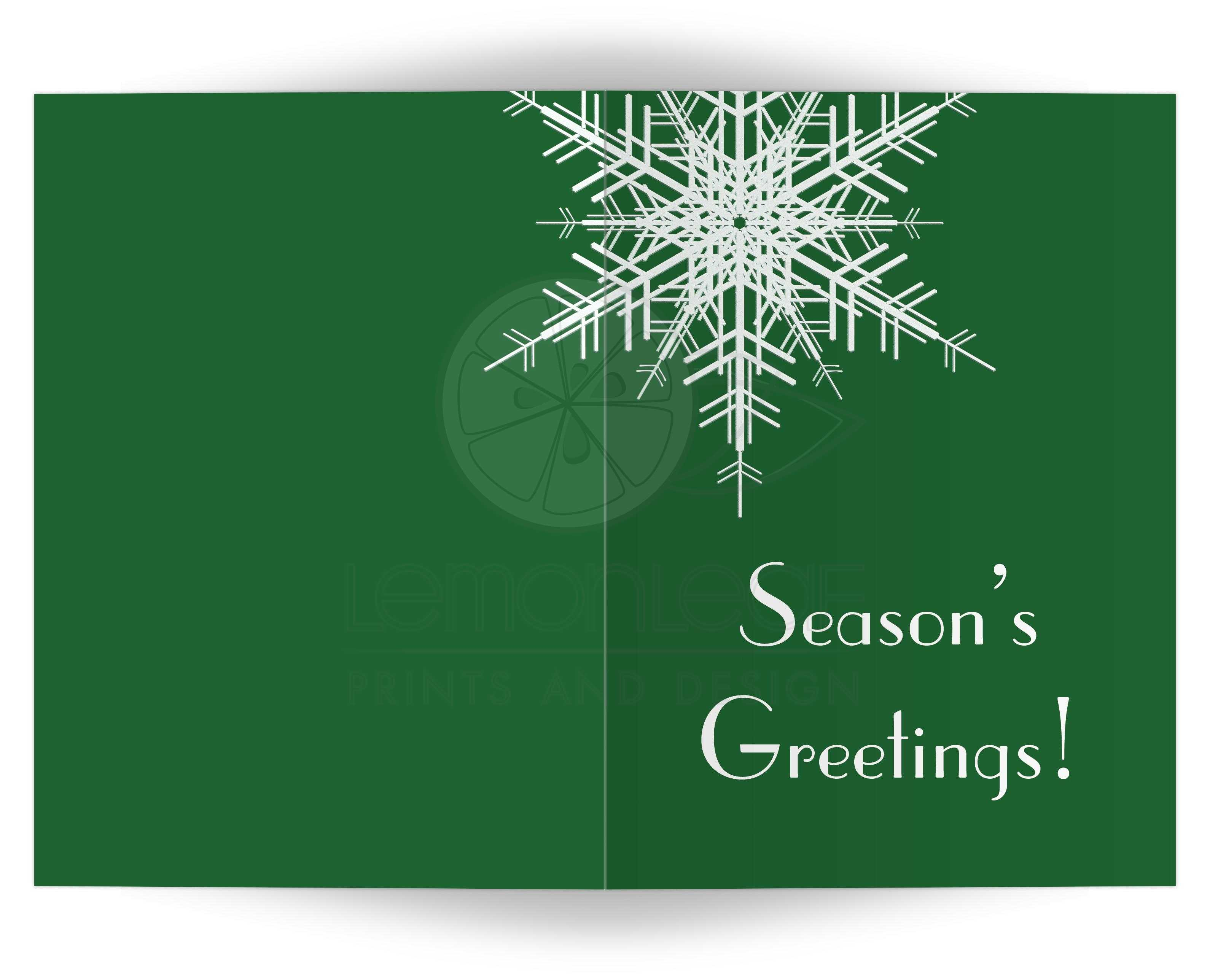 Holiday Card Seasons Greetings Snowflake On Green 5x7