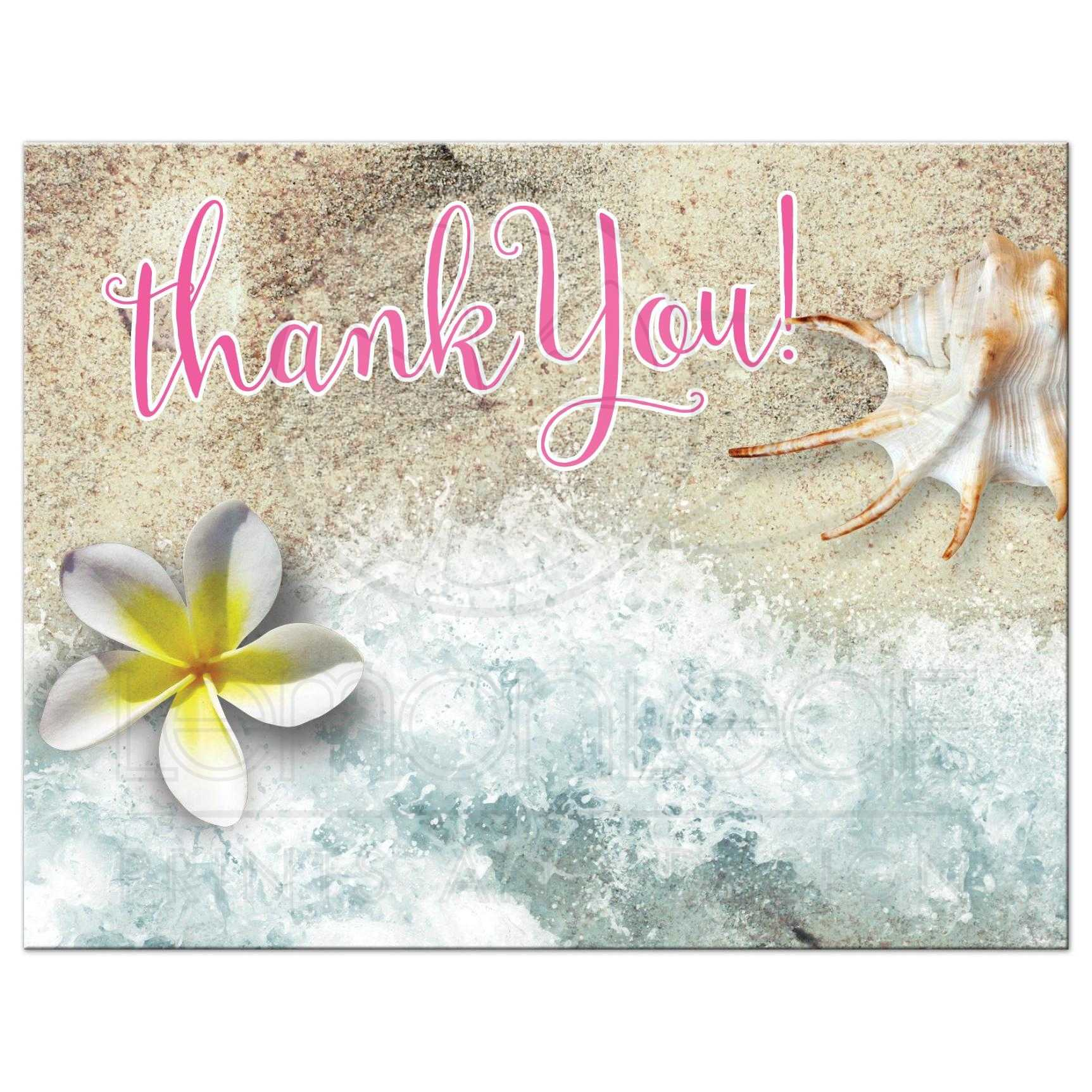 by the beach thank you postcard frangipani seashell