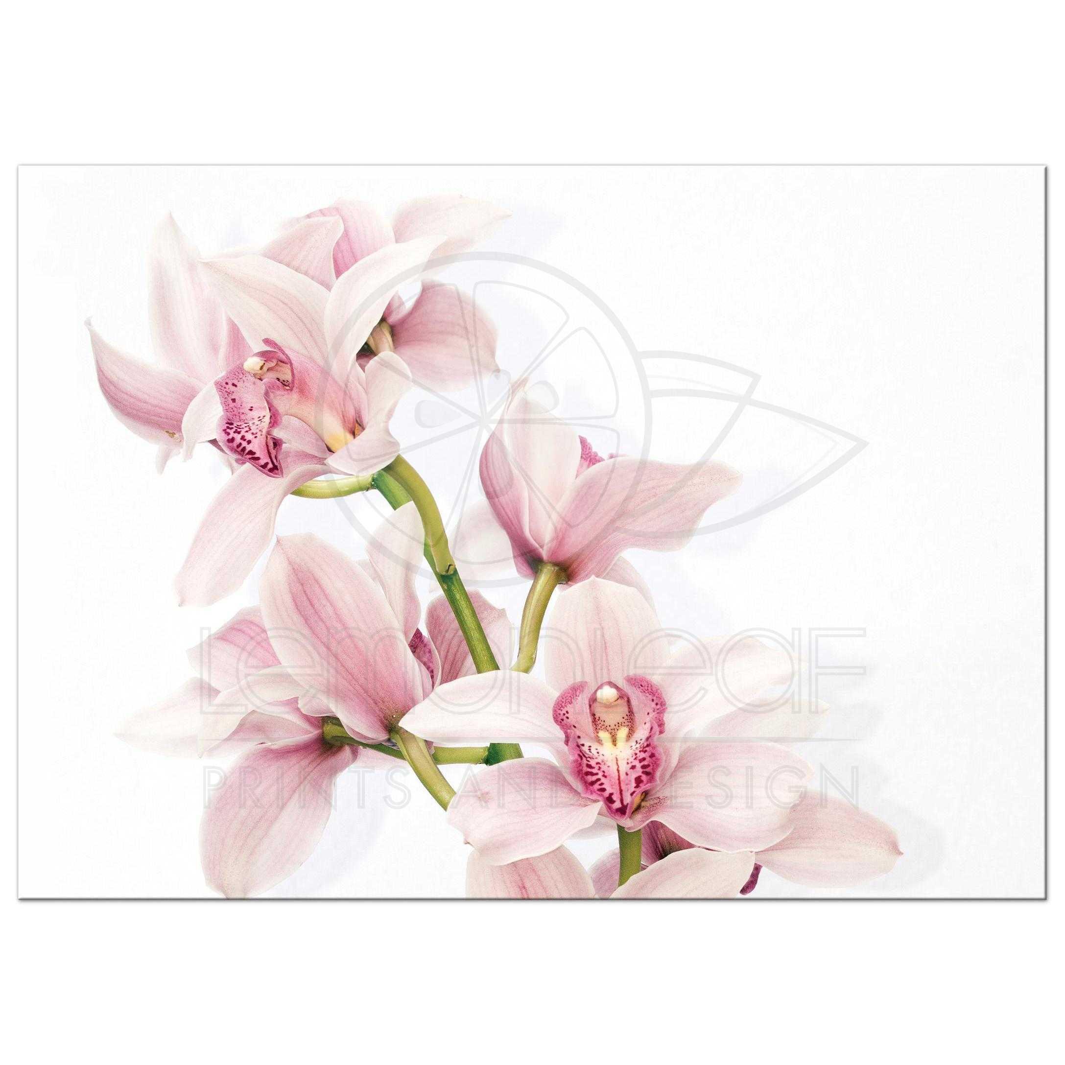 Delightful ... Elegant Pink And Burgundy Orchid Flower Wedding Invitation Back ...