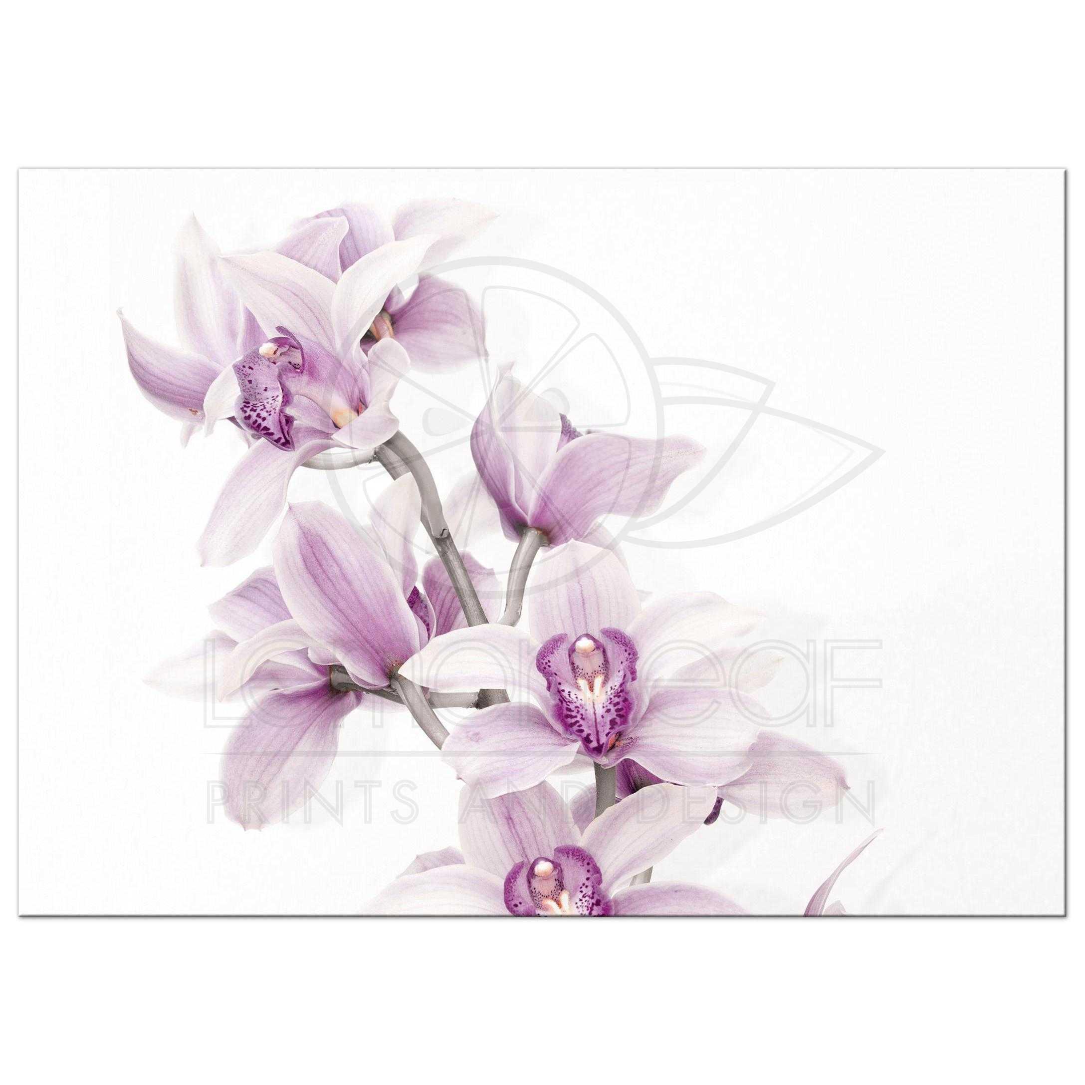 Purple Teal Orchid Wedding Invitation Landscape Version